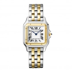 Cartier Panthère de Cartier Steel & 18K Yellow Gold Ladies Watch W2PN0007