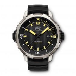 IWC Aquatimer Automatic 2000 Titanium Divers Watch IW358001